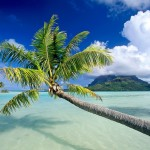 bora_bora_wallpaper_beaches_nature_wallpaper_1280_1024_1424
